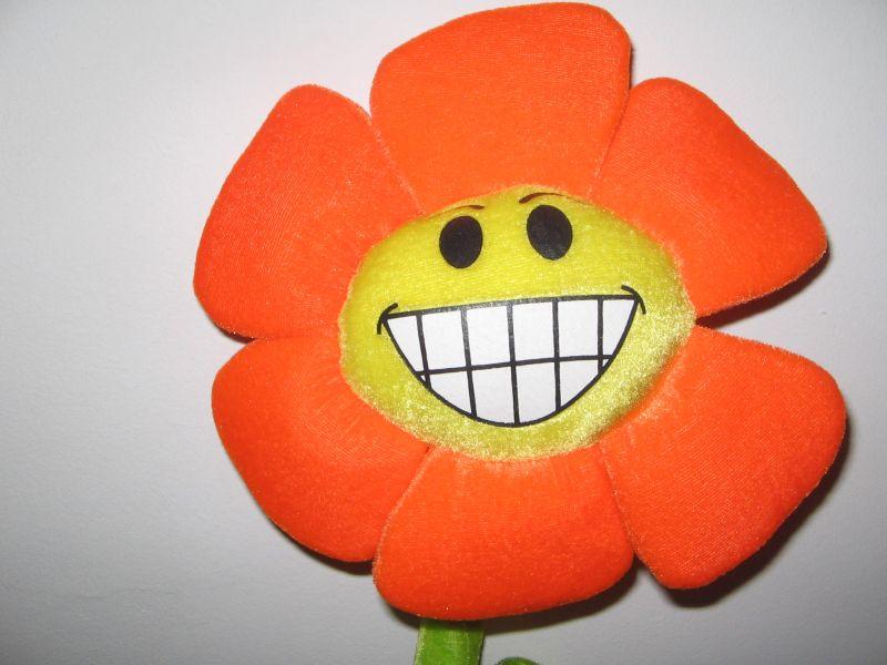 fleur-orange-sourire